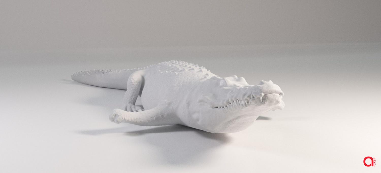 3D  модель аллигатора
